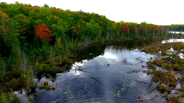 kayaker on remote lake in the upper peninsula of michigan from above - upper peninsula stock videos & royalty-free footage