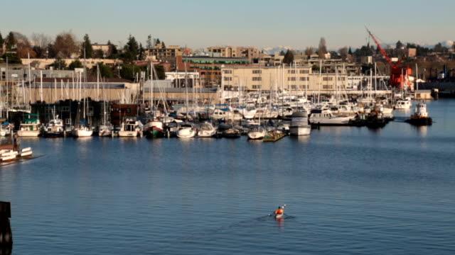 Kayaker paddles in city bay