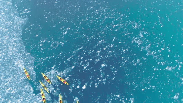 kayakers in harbor - antarctic peninsula stock videos & royalty-free footage