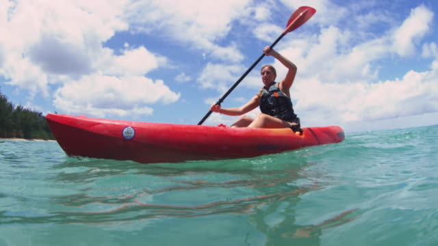 kayakers paddling back to shore - turtle bay hawaii stock videos & royalty-free footage