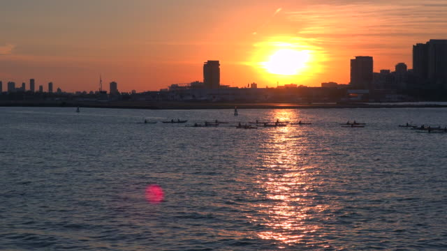 Kayakers Returning to Toronto City in the Evening as Sun Sets Up