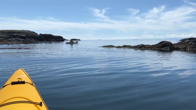 vidéos et rushes de kayak colombie-britannique - pagayer