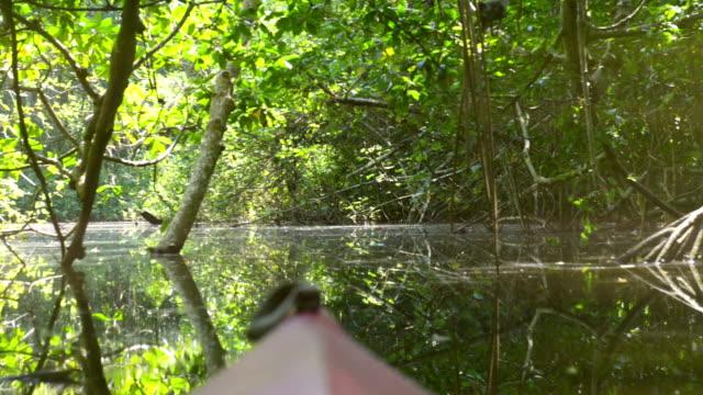 vídeos y material grabado en eventos de stock de en kayak en la laguna de cacao - kayak barco de remos