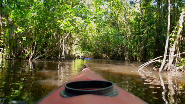 kayaking in the cacao lagoon - kayaking stock videos & royalty-free footage