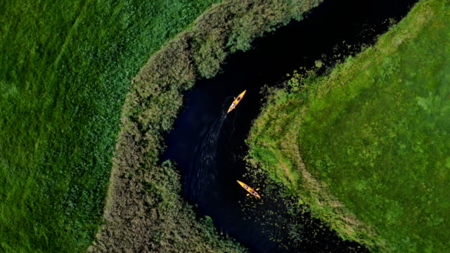 kayaking on a wild river. aerial view - kayaking stock videos & royalty-free footage