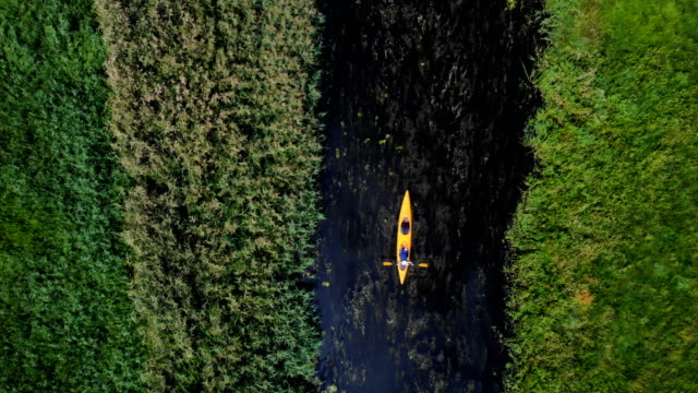 kayaking on a wild river. aerial view - riverbed stock videos & royalty-free footage