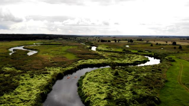 vídeos de stock, filmes e b-roll de caiaque em um rio selvagem. vista aérea - reserva animal