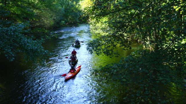 kayaking, rur river, north eifel territory, eifel region, germany, europe - rowing stock videos & royalty-free footage