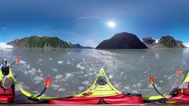 kayaking through ice. - kayak video stock e b–roll
