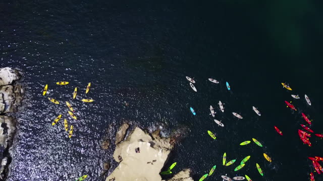 vidéos et rushes de kayaks off san diego coastline, aerial - kayak