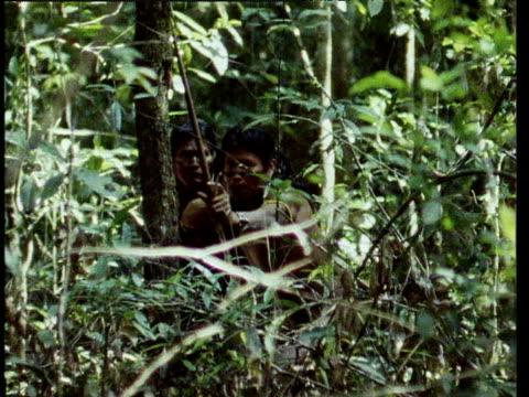 kayapo indian hunter hiding in foliage shoots arrow straight at camera brazil - 1987 bildbanksvideor och videomaterial från bakom kulisserna