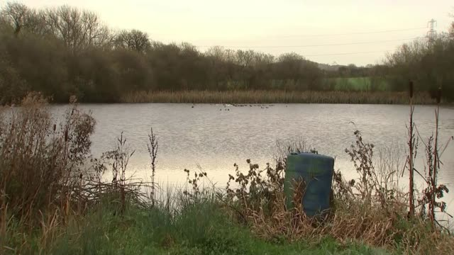 police find body england leicestershire ibstock ext small lake and woodland group of people through field during search for kayleigh haywood police... - レスターシャー点の映像素材/bロール