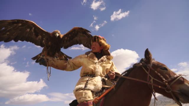 kazakh eagle hunter in mongolia on horse with golden eagle - indigenous culture stock videos & royalty-free footage