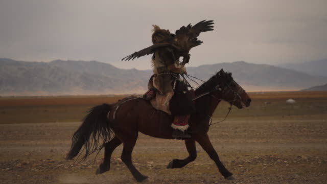 kazakh eagle hunter in mongolia riding horse with golden eagle - independent mongolia stock videos & royalty-free footage