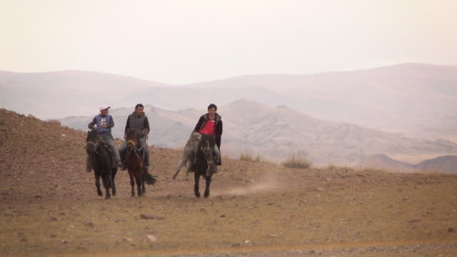 kazakh eagle hunters in mongolia play kokbar game at golden eagle festival - drei tiere stock-videos und b-roll-filmmaterial