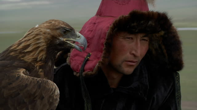 vídeos de stock, filmes e b-roll de kazakh man and tamed golden eagle  - só um adulto de idade mediana