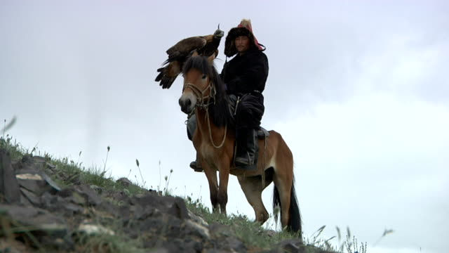 kazakh man on horse with golden eagle on his arm - independent mongolia stock videos & royalty-free footage