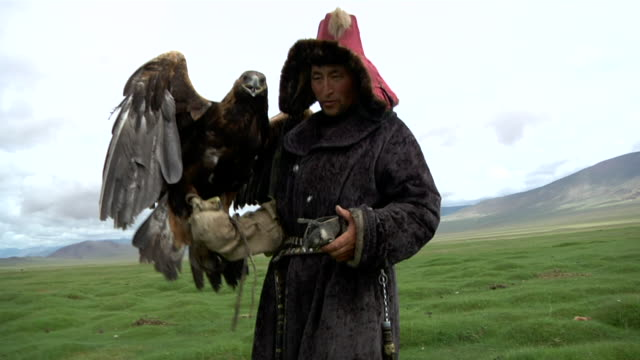 vídeos de stock, filmes e b-roll de kazakh man walking with golden eagle on his arm - só um adulto de idade mediana