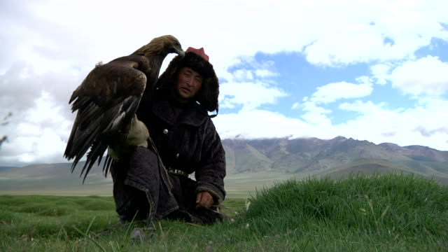 vídeos de stock, filmes e b-roll de kazakh man with golden eagle on his arm and mountain landscape on the background - só um adulto de idade mediana
