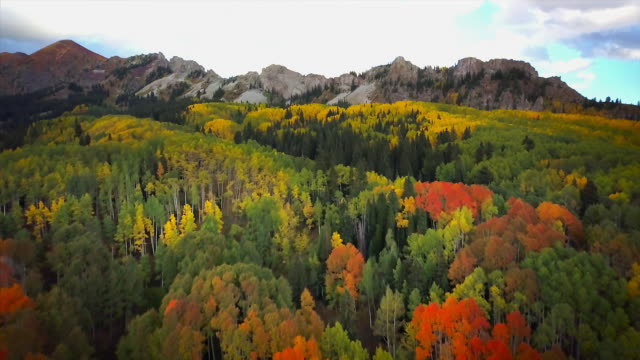 kebler pass fall colors and mountain views - montagne rocciose video stock e b–roll