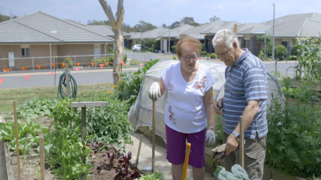 keeping the garden in check - active seniors stock videos & royalty-free footage