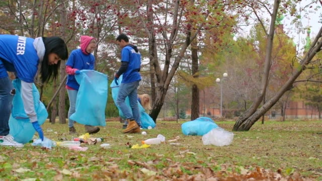 keeping the park tidy - all shirts stock videos & royalty-free footage