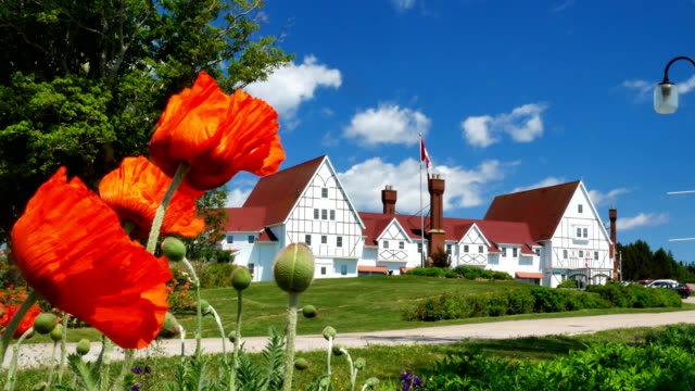keltic lodge in nova scotia's iconic cape breton - sunny stock videos & royalty-free footage