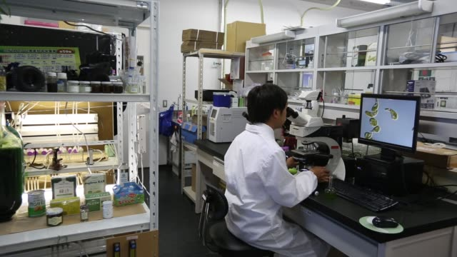 Kengo Suzuki head of Research and Development at Euglena Co looks at Euglena a singlecelled microscopic algae known as Midorimushi in Japanese...