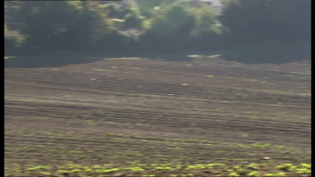 kent swanley upper hockenden farm ext general view of ploughed fields and farm buildings in distance pan across ploughed field farm workers working... - crucifers stock videos & royalty-free footage