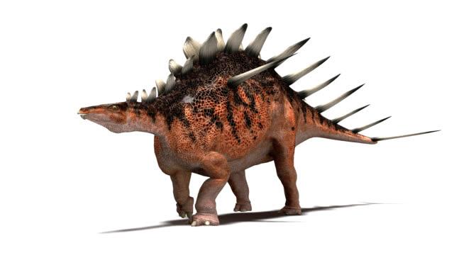 kentrosaurus dinosaur walking - jurassic stock videos & royalty-free footage