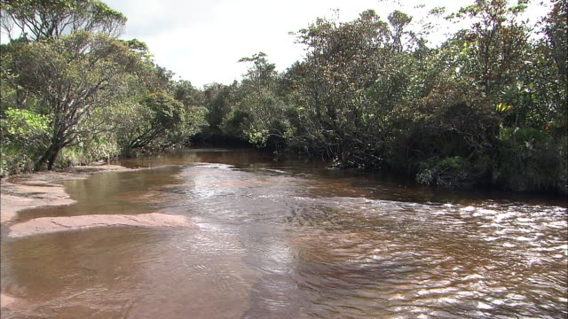 Kerepakupai River On Top Of Auyantepui In Guiana Highlands