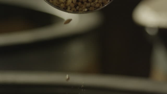 kernels of barley seeds falling in a pile - smoothie stock videos & royalty-free footage