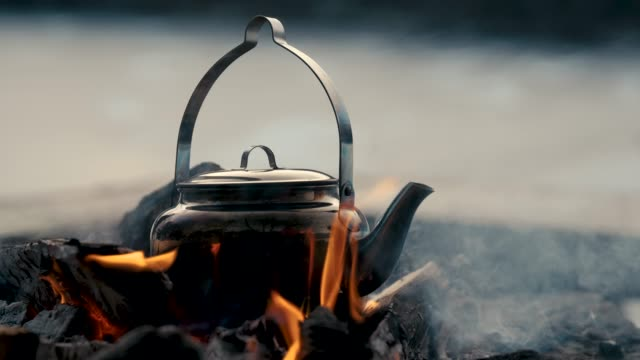 vídeos de stock e filmes b-roll de a kettle on a bonfire - casca de árvore