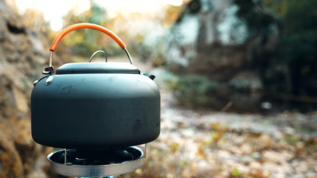 kettle on campfire at the forest - tenda video stock e b–roll