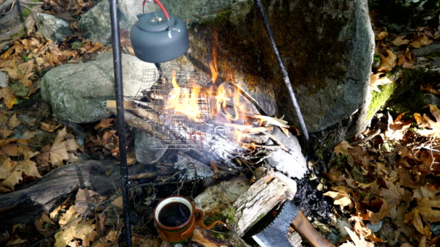 kettle on campfire at the forest - tea pot stock videos and b-roll footage