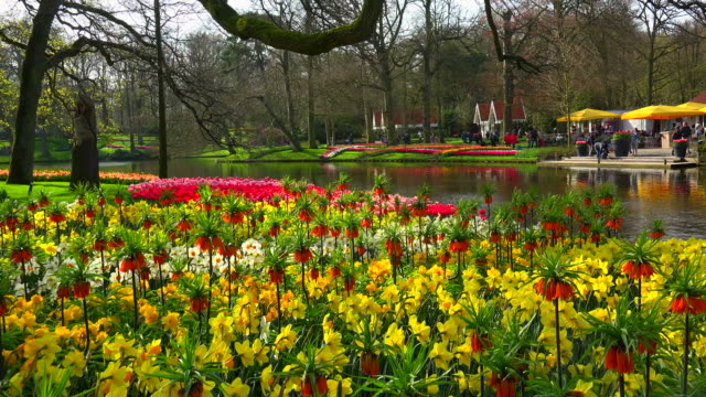 Keukenhof Gardens, Lisse, South Holland, Netherlands