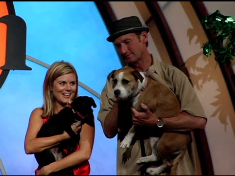 kevin nealon rachael harris tiffani thiessen and ryan stiles at the 4th annual much love animal rescue celebrity comedy benefit at the laugh factory... - tiffani thiessen stock videos & royalty-free footage