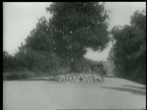 b/w 1915 keystone kops shooting guns in air in car speeding past tree in center of country road - 1910 stock videos & royalty-free footage