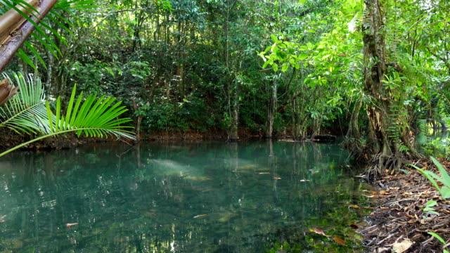 クロン歌 nam、クラビ タイで目に見えない - クラビ県点の映像素材/bロール