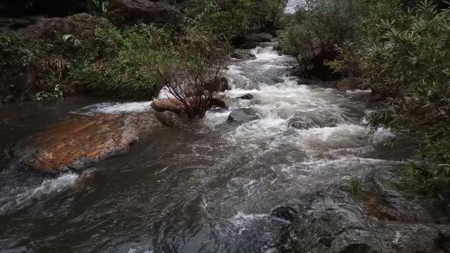 khlonglan wasserfall im regenwald - zweig stock-videos und b-roll-filmmaterial