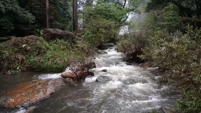 stockvideo's en b-roll-footage met khlonglan waterval in het regenwoud - twijg