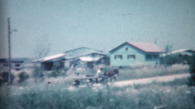 kibbutz life 1962 - israel stock videos & royalty-free footage