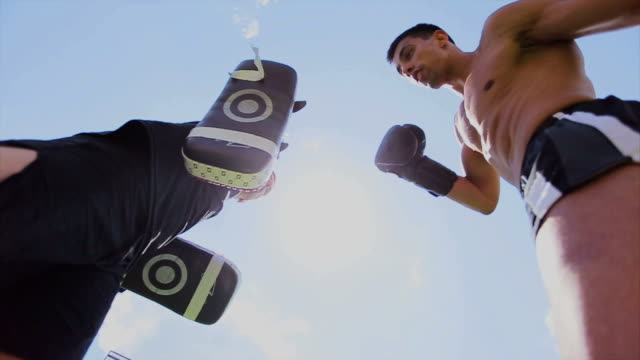kick boxer - kick boxing stock videos and b-roll footage