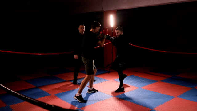 kick boxers training in ring - muay thai stock videos and b-roll footage