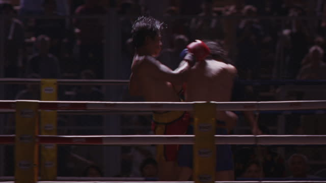 kickboxers punch and kick each other in a match and one gets knocked down. - kickboxing stock videos & royalty-free footage