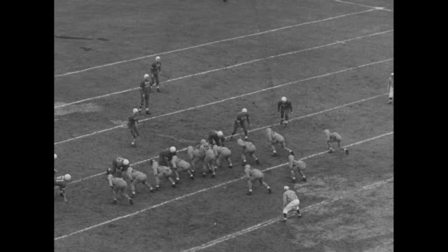 kickoff / #99 of hamilton tiger-cats carries ball to set up play / crowd / #68 hamilton kicks from 39 yard for 3 points / crowd / #99 hamilton passes... - アメフト ファーストダウン点の映像素材/bロール