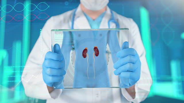 腎臓健診 - 4k解決 - 副腎点の映像素材/bロール