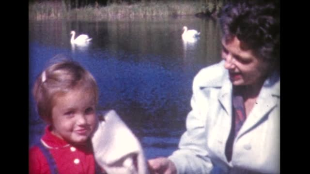 1960 kids and grandparents visit swans in lake