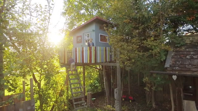 kids climbing up a treehouse in the garden at sunset - treehouse stock videos & royalty-free footage