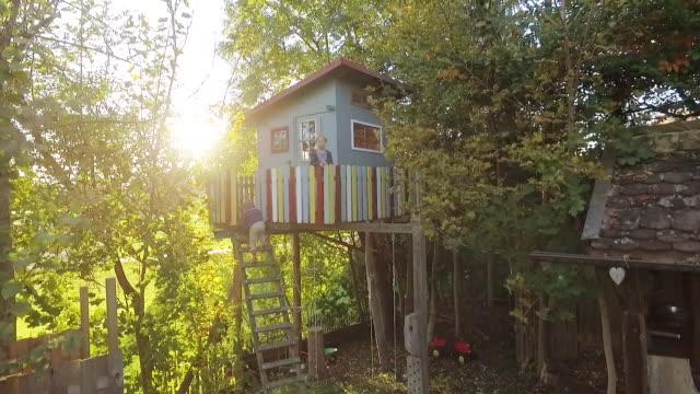 vídeos de stock, filmes e b-roll de kids climbing up a treehouse in the garden at sunset - treehouse